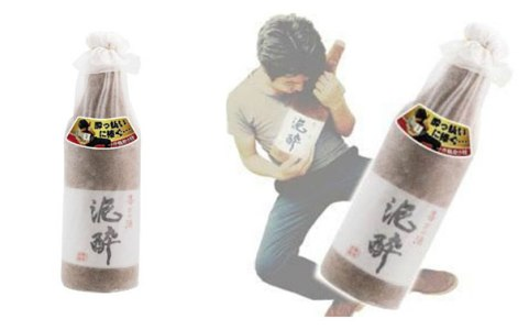 sake-bottle-pillow-village-vanguard-2